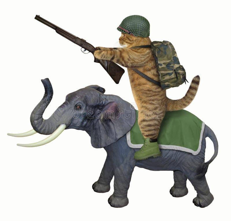 Кот с винтовкой на слоне иллюстрация штока