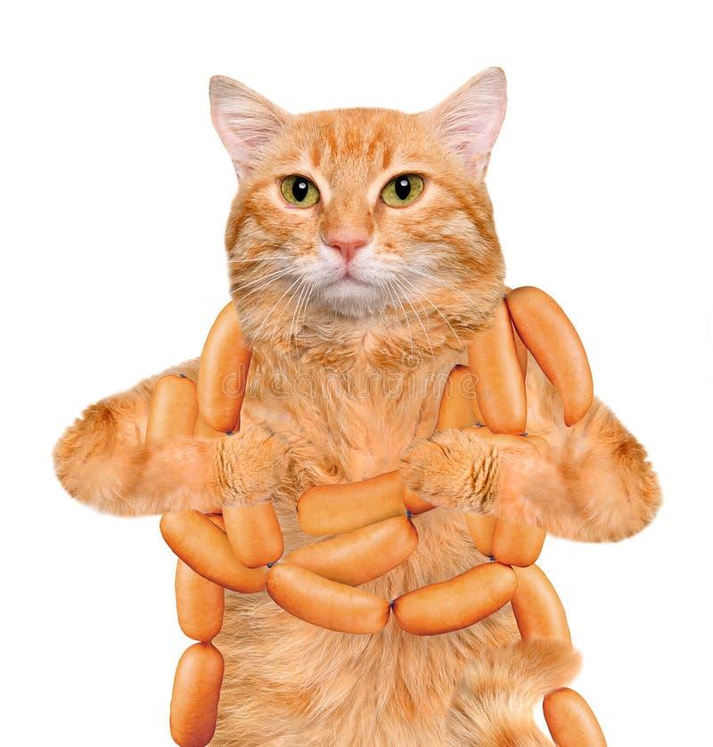 Открытка кот с сосиской, жестами надписями