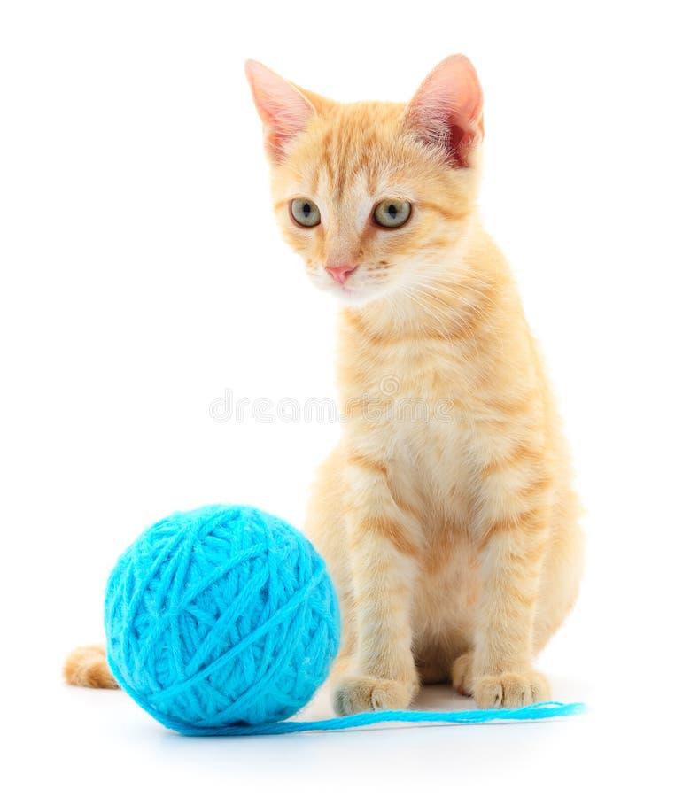 Кот с шариком пряжи стоковые фото