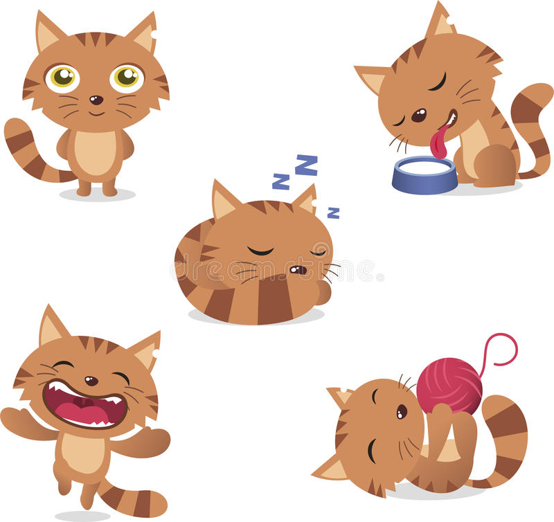 Кот установил 1 бесплатная иллюстрация