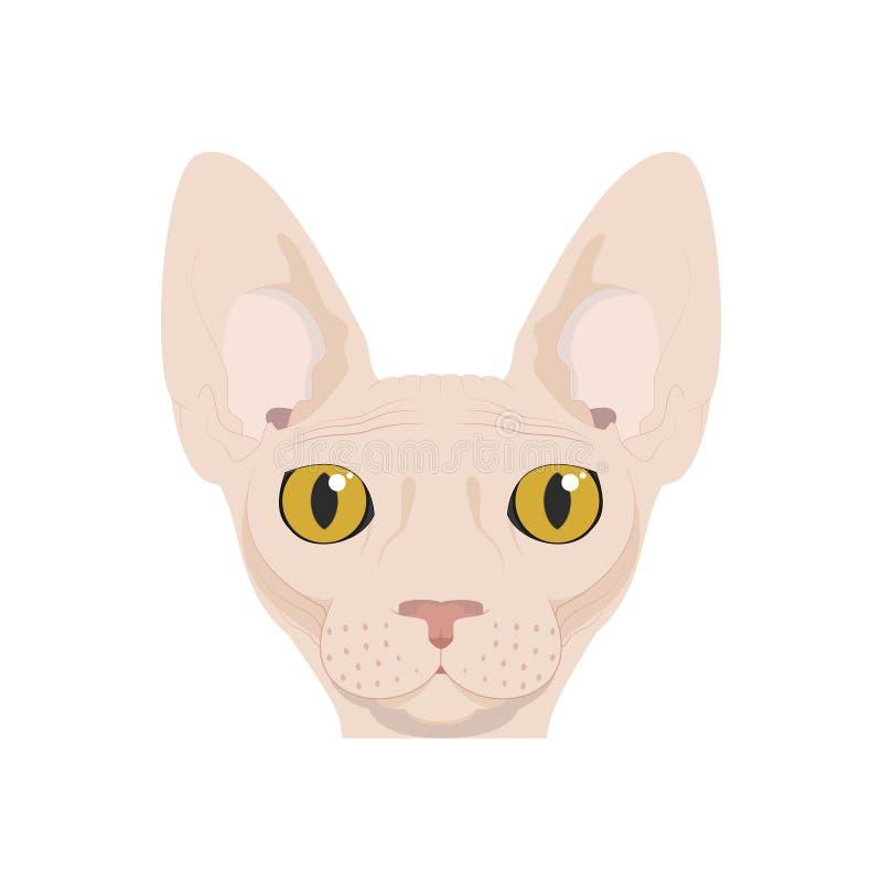 Кот Sphynx изолированный на белой иллюстрации вектора предпосылки иллюстрация вектора