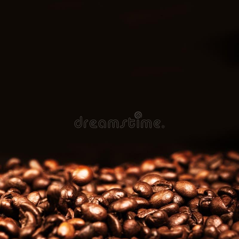 Кофеин кофейных зерен зажарил в духовке обои эспрессо Брайна с blac стоковые фото
