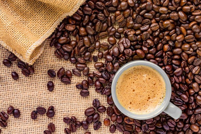 Кофейная чашка помещенная на кровати кофейных зерен стоковая фотография rf