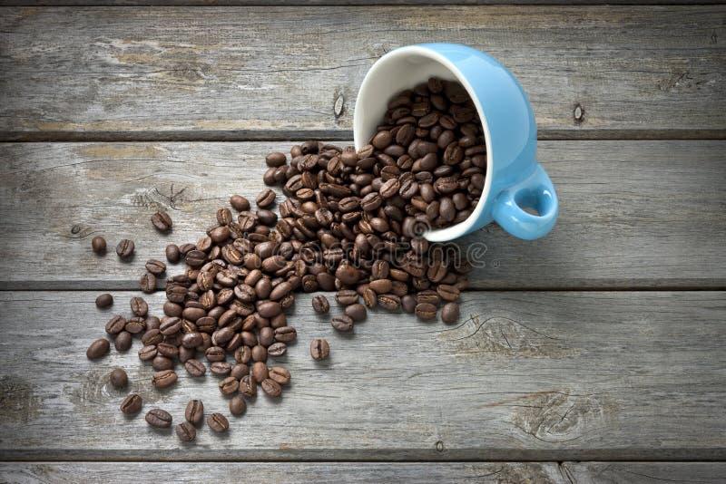 кофейная чашка фасолей предпосылки стоковое фото rf