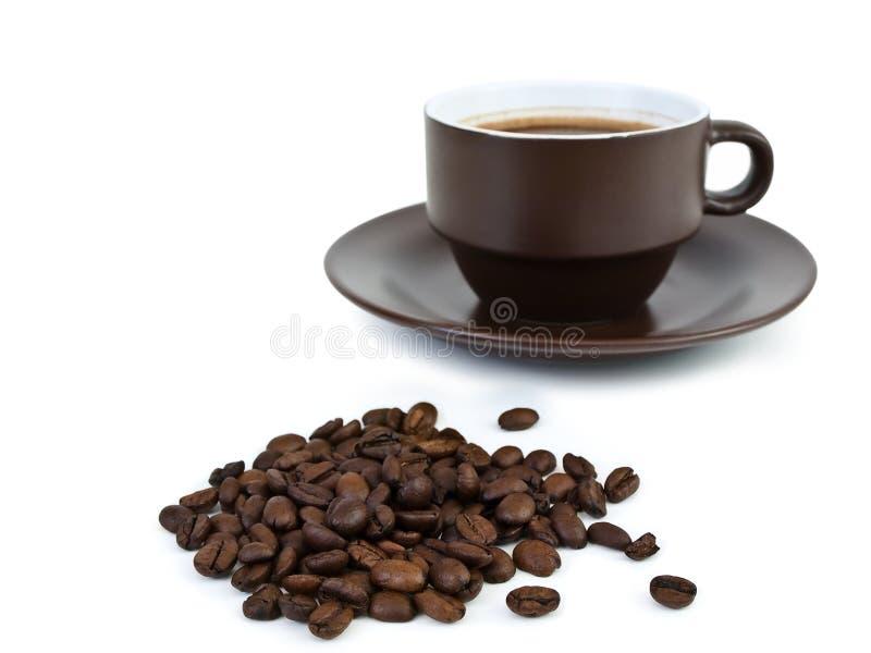 кофейная чашка фасолей стоковая фотография rf
