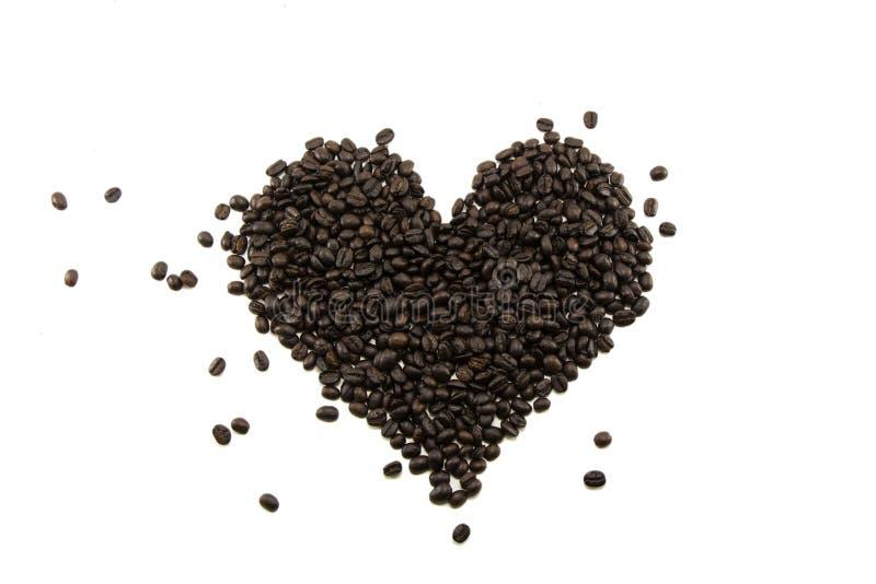Кофейное зерно изолированное на белой предпосылке стоковые изображения rf