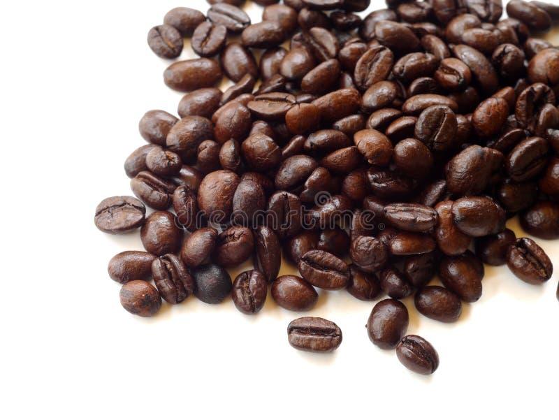 Кофейные зерна Брайна изолированные на белизне стоковое изображение rf