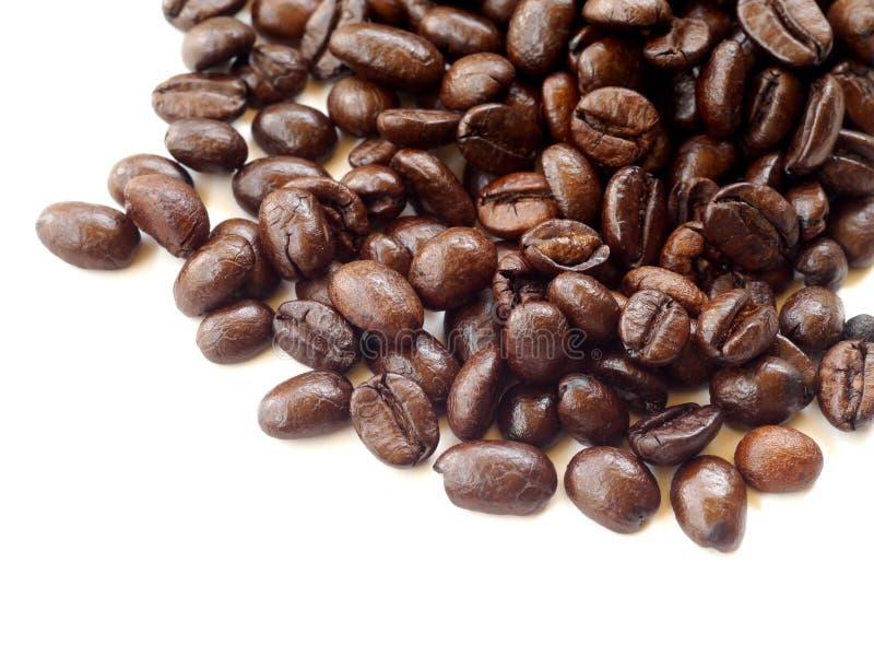 Кофейные зерна Брайна изолированные на белизне стоковые изображения
