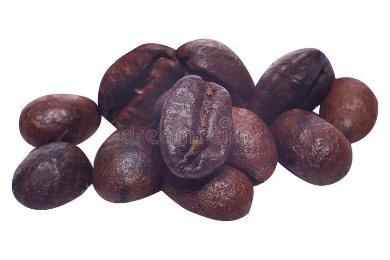 Кофейные зерна закрывают вверх изолированный на белой предпосылке стоковая фотография rf