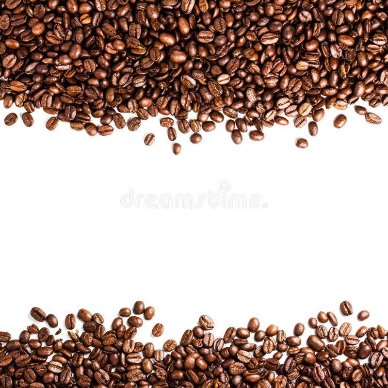 Кофейные зерна изолированные на белой предпосылке с copyspace для te стоковые фотографии rf