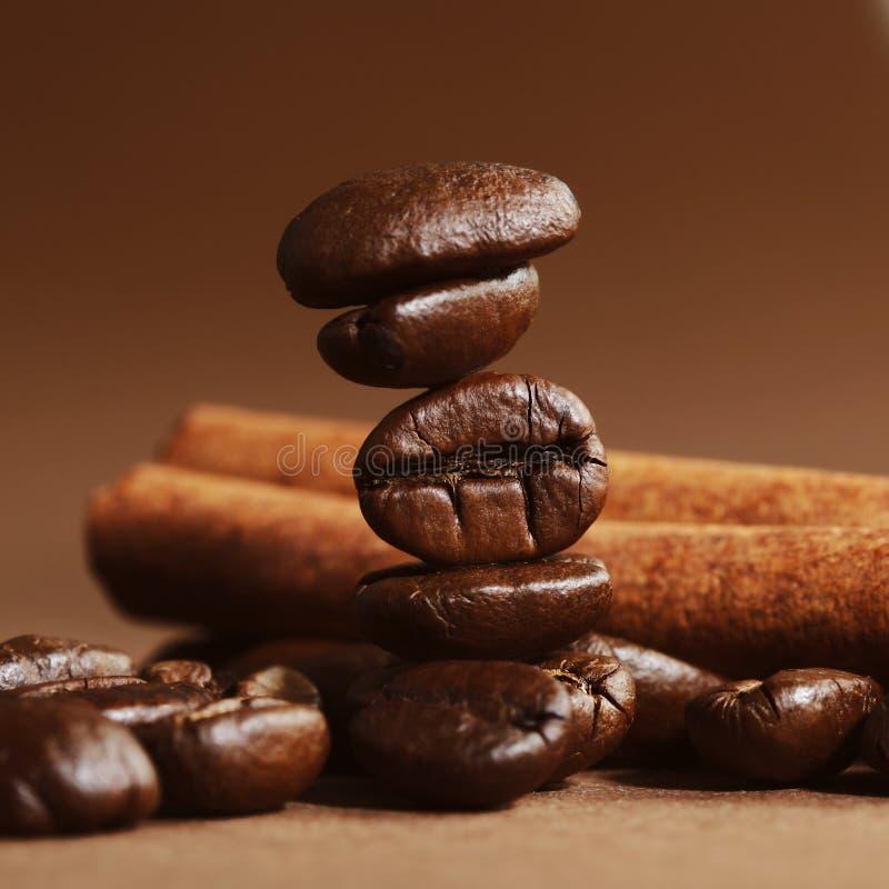 Кофейные зерна и циннамон стоковое изображение rf