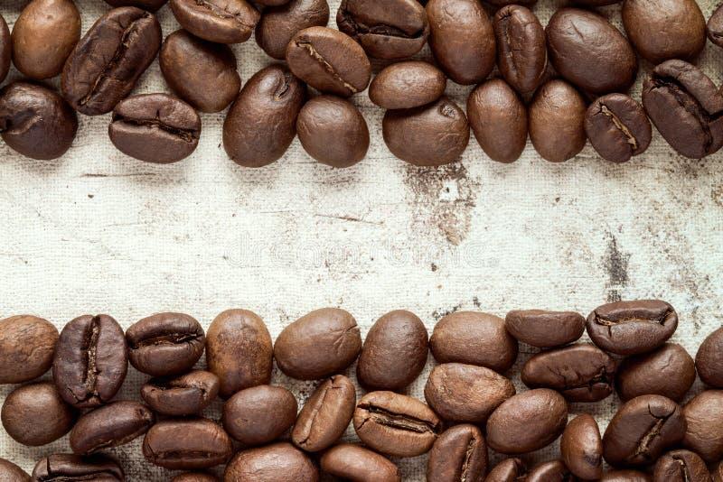 Кофейные зерна на границе изображения стоковые фото