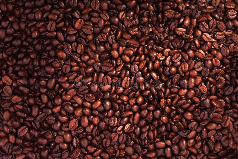 Кофейные зерна для предпосылки и текстуры - красивой предпосылки еды стоковое изображение