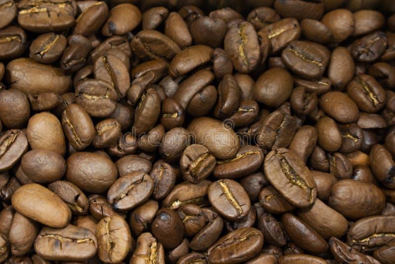 Кофейные зерна Arabica соответствующие для предпосылки и для упаковки ко стоковые изображения