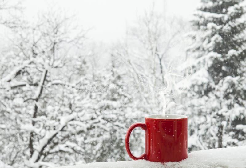 Кофе в снежке стоковое фото