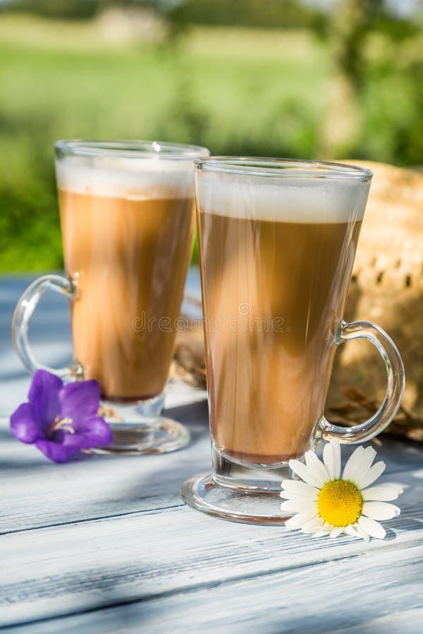 Кофе в солнечном саде лета стоковые изображения