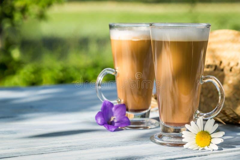 Кофе в солнечном саде лета стоковое фото rf
