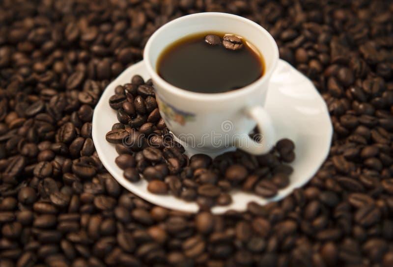 Кофе в черно-белом стоковые фото