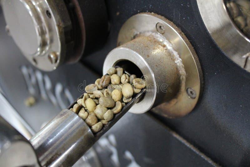 Кофе жарить в духовке зеленый стоковое фото