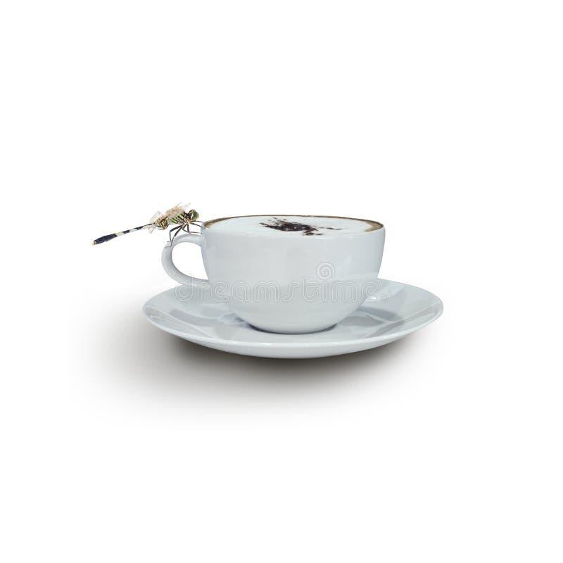 Кофе капучино в белой чашке с Dragonfly стоковые фотографии rf