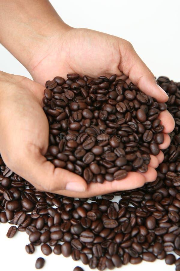 кофе фасолей ручной стоковая фотография
