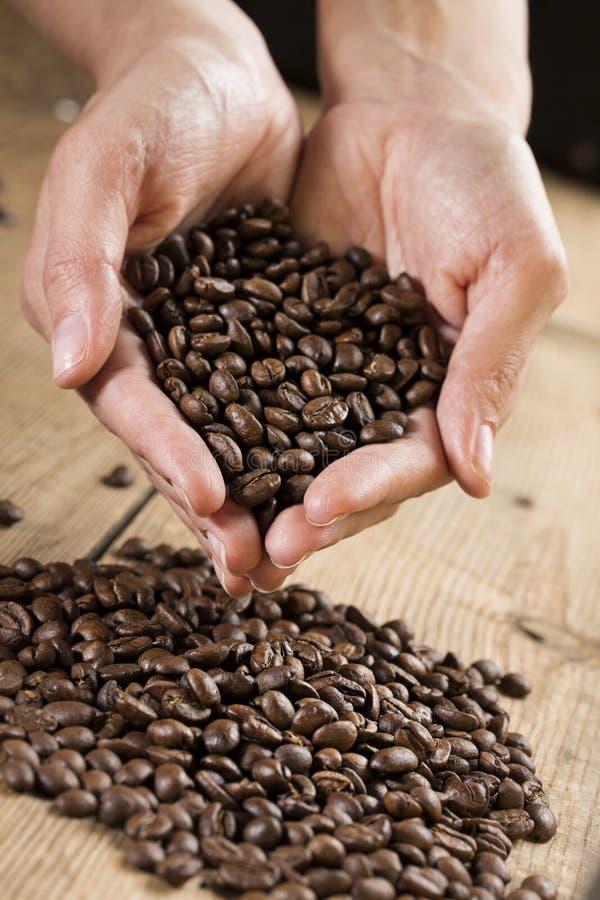 кофе фасолей вручает удерживание стоковая фотография