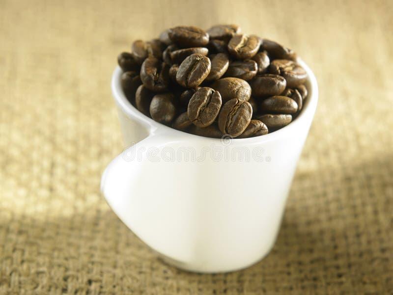 кофе фасоли близкий снятый вверх стоковые изображения rf