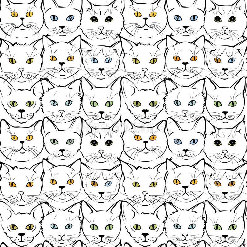 Кошачьи котята намордников бесплатная иллюстрация