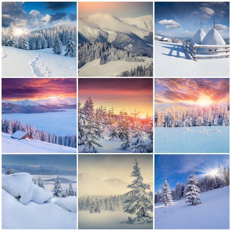 Коллаж зимы с 9 квадратными ландшафтами рождества стоковые изображения