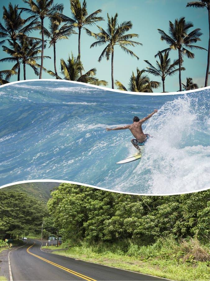 Коллаж изображений Гаваи (США) - путешествуйте предпосылка (мои фото) стоковые изображения