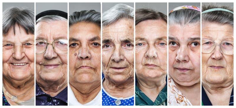 Коллаж крупного плана множественных старших женщин стоковые изображения rf