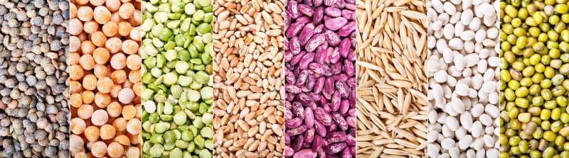 Коллаж различных хлопьев, семян, фасолей и зерен стоковое фото