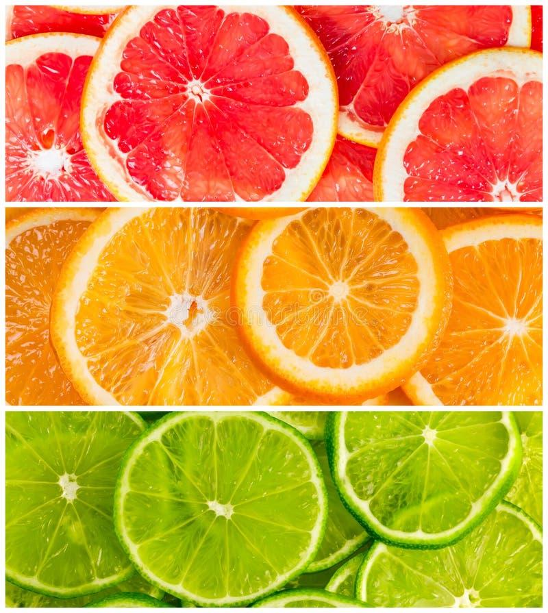 Коллаж цитрусовых фруктов стоковые изображения rf