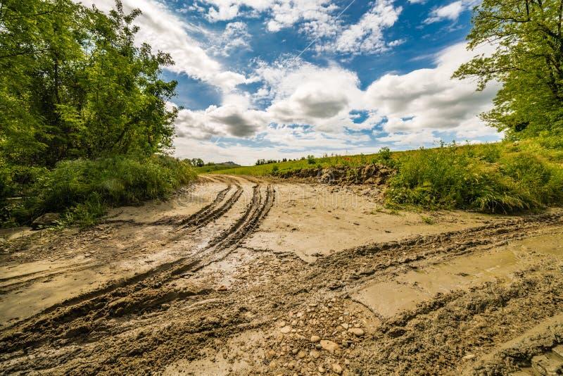 Колейности в грязи трактором стоковое изображение
