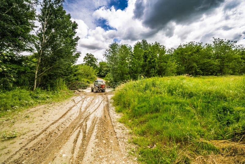 Колейности в грязи трактором стоковая фотография rf