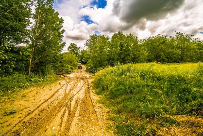 Колейности в грязи трактором стоковая фотография