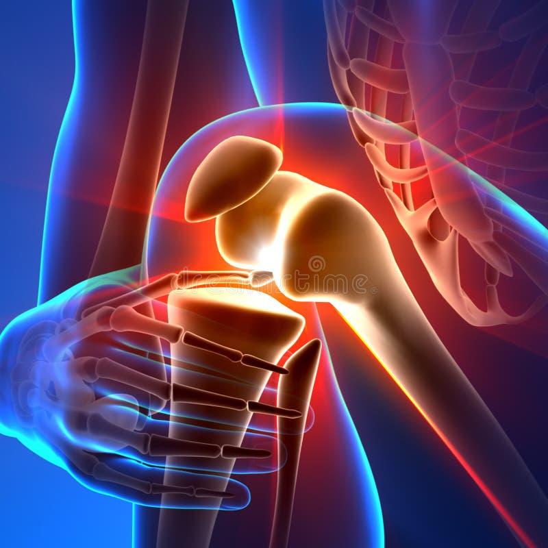 Колено боли - лучи анатомии иллюстрация вектора