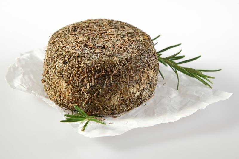Колесо мягкого сыра покрытое в травах и специях стоковые изображения