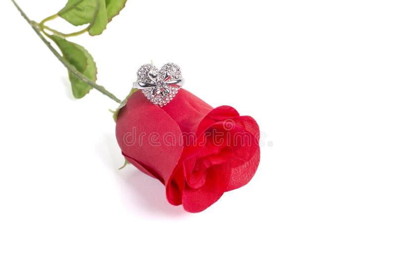 Кольцо формы сердца на красной розе стоковые фотографии rf