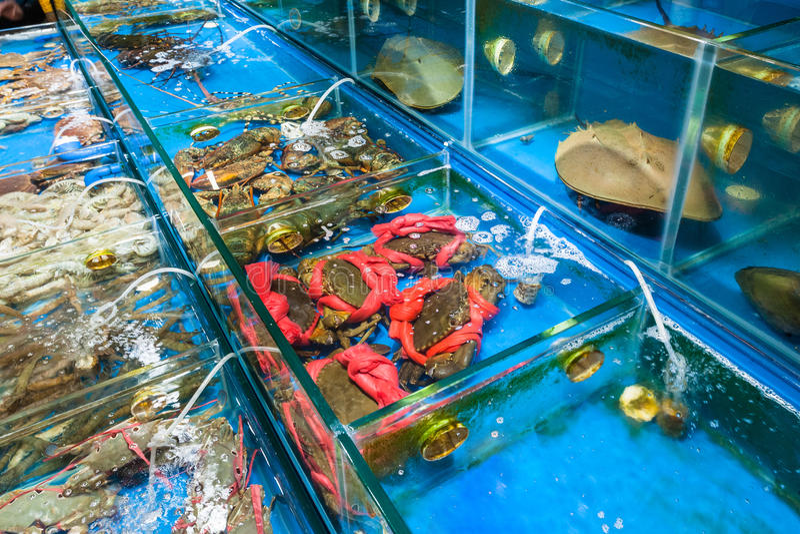 крабы и ракы в рыбном базаре в Гуанчжоу стоковая фотография
