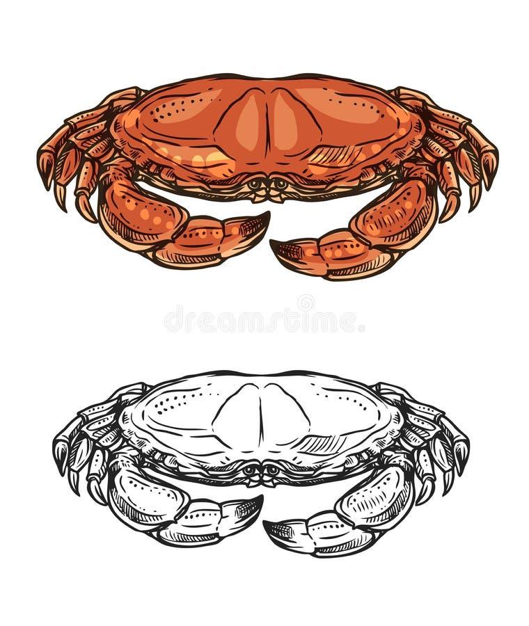 Краб, морское животное и моллюск океана r иллюстрация штока