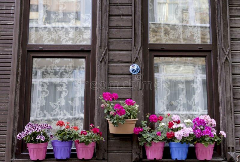 Край окна дома с цветками стоковые фото