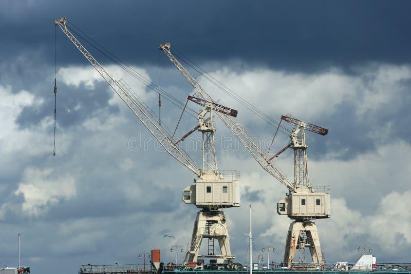 Краны в порте Бесплатные Стоковые Изображения