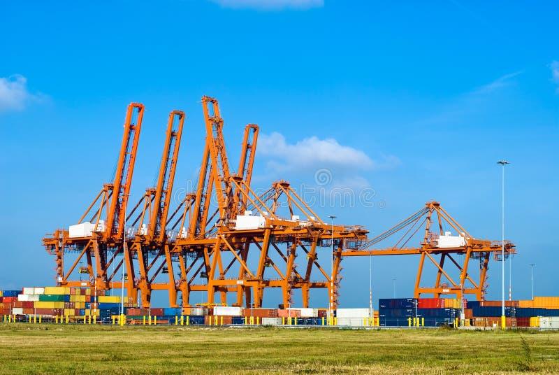 краны контейнеров огромные стоковое изображение rf