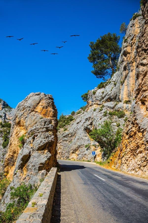 Краны проникать над дорогой горы стоковая фотография rf