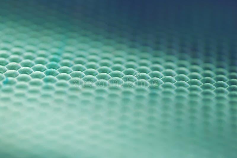 крапивница пчелы зеленая стоковая фотография