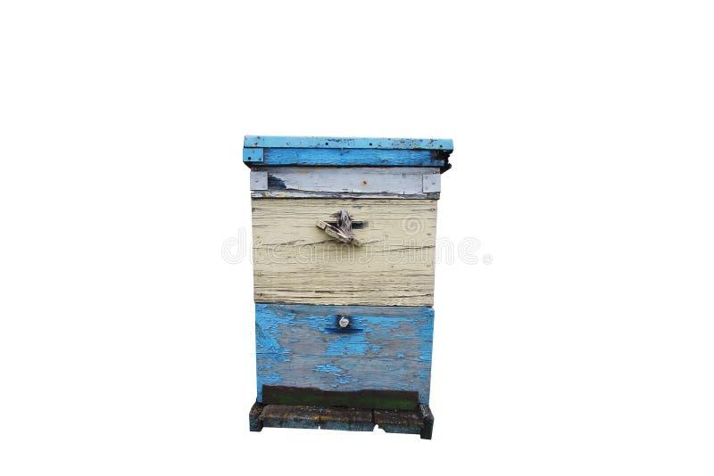 Крапивница пчелы изолирована стоковые фотографии rf