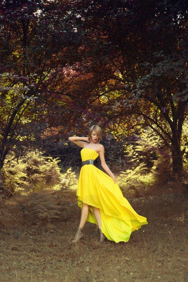 Красивая дама в fairy лесе стоковое изображение