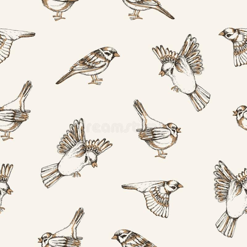 Красивая безшовная картина с воробьями летания и усаживания на светлой предпосылке Фон с милой малой птицей города бесплатная иллюстрация