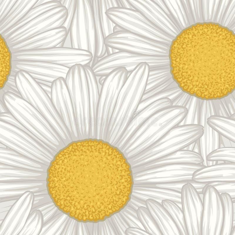 Красивая безшовная предпосылка с маргариткой цветков иллюстрация вектора